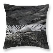 Do Not Disturb Throw Pillow by Joan Carroll