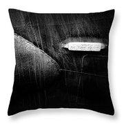 Do Not Paint Throw Pillow