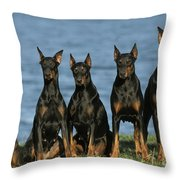 Doberman Pinschers Throw Pillow