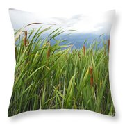 Dobie Swamp Tails Throw Pillow