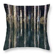 Dock Pilings Throw Pillow