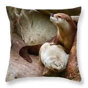 Doctor Otter At The Western North Carolina Nature Center Throw Pillow