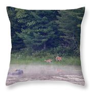 Doe And Fawn In The Early Morning Throw Pillow