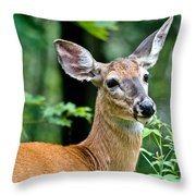 Doe Close Throw Pillow