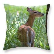 Doe Meadow Throw Pillow