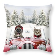 Dog and cat driving car through snow photograph by john daniels and johan de meester for Home decoration meester