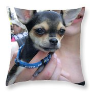 Dog And True Friendship 7 Throw Pillow
