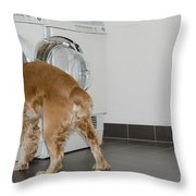 Dog And Washing Machine Throw Pillow