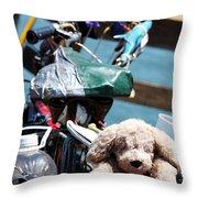 Dog Bike Throw Pillow