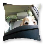 Dog Driving A Car Throw Pillow