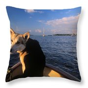 Dog In A Dingy At Put-in-bay Harbor Throw Pillow