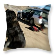 Dog In Front Of A Climbers Car Throw Pillow