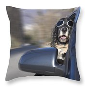 Dog In The Car Window Throw Pillow