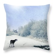 Dog Looking Back Throw Pillow by Amanda Elwell