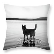 Dog Looking Over Abiquiu Reservior Throw Pillow