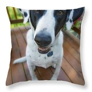 Dog On A Wooden Deck Throw Pillow