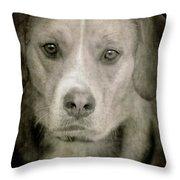 Dog Posing Throw Pillow