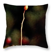 Dog Rose Throw Pillow