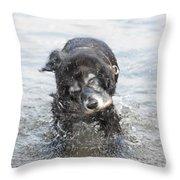 Dog Shake Throw Pillow