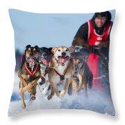 Dog Sledding Race Throw Pillow by Mircea Costina Photography