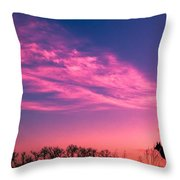 Dog Sunrise 2 Throw Pillow