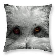 Coton Eyes Throw Pillow