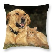 Dog With Kitten Throw Pillow by Rolf Kopfle