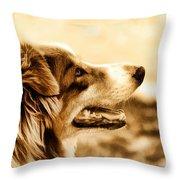 Doggie Face Throw Pillow