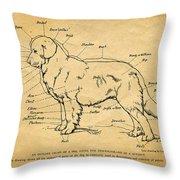 Doggy Diagram Throw Pillow