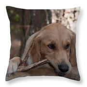 Doggy Heaven Throw Pillow