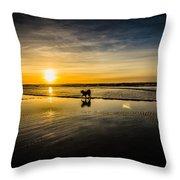 Doggy Sunset Throw Pillow