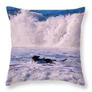 Dogs At Carmel California Beach Throw Pillow