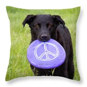 Dogs For Peace Throw Pillow