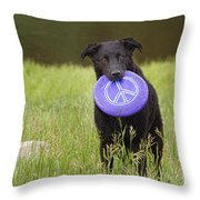 Dogs For Peace Too Throw Pillow