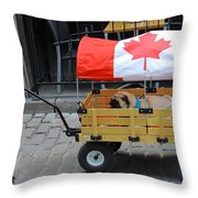 Dog's Life In Canada Throw Pillow
