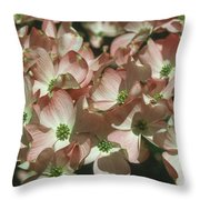 Dogwood 1 Throw Pillow