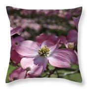 Dogwood  5576 Throw Pillow