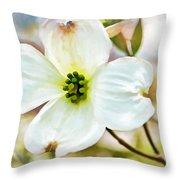 Dogwood Blossom - Digital Paint I  Throw Pillow