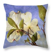 Dogwood Blossoms And Blue Sky - D007963-b Throw Pillow