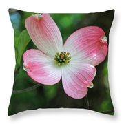 Dogwood Blosssom Throw Pillow