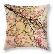 Dogwood Canvas 3 Throw Pillow