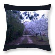Dogwood Country Lane Throw Pillow