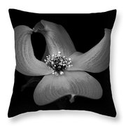 Dogwood In Black And White Throw Pillow