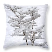 Dogwood In Snow Throw Pillow