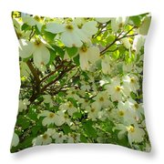 Dogwood Kissed By The Sun Throw Pillow