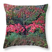 Dogwood Leaves In The Fall Throw Pillow