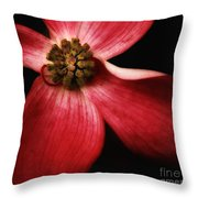 Dogwood Macro Throw Pillow
