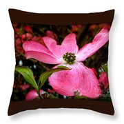 Dogwood Shows Pink Throw Pillow