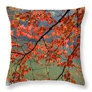 Dogwood Tree Throw Pillow