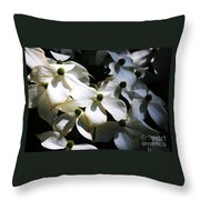 Dogwoods Caught In Central Park Throw Pillow